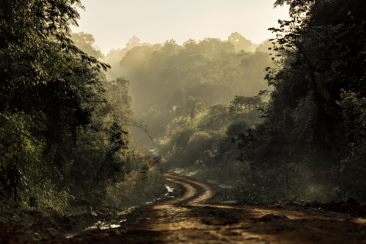 Traveling-moving-scary-dirt-road